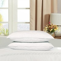 Duck & Goose Co Bedding Hotel Home Use Medium Density 100% Duck Feather & Down Pillow Set Two Pack