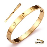 GSG Stainless Steel Oval Gold-Tone Screw Head Bangle Bracelet With Screwdriver For Women & Men  FREE SHIPPING